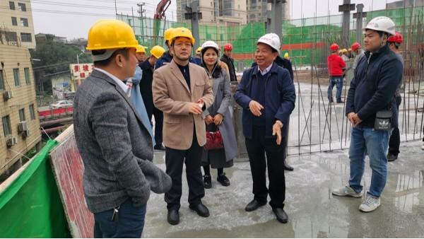 杨绿峰副厅长率队到陆川县美坡花园装配式建筑示范项目调研